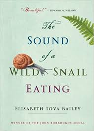 October 22: The Sound of a Wild Snail Eating (Bailey)